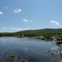centro Mongolia paesaggio ruscello