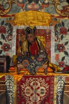 212 1440 HF Shank interno cerimonia