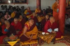 212 1443 HF Shank interno cerimonia